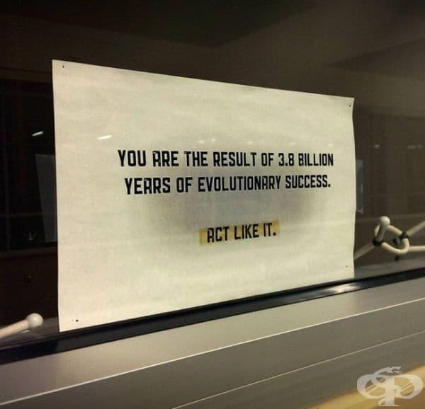 """Този учител по биология наистина знае как да ви мотивира... /""""Вие сте резултат от 3,8 билиона години еволюционен успех. Правете като него.""""/"""