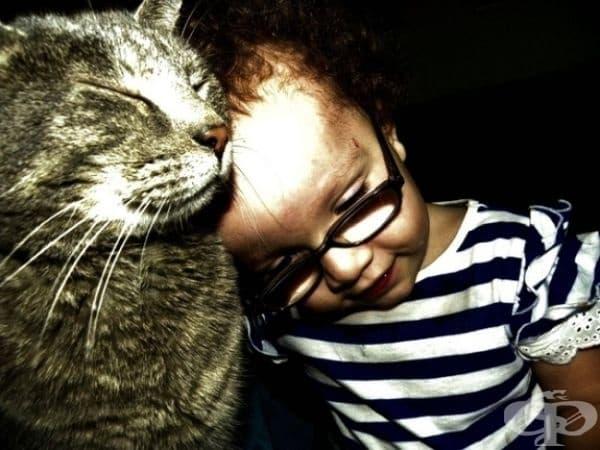 Това момиче има проблеми с развитието, а нейните родители се страхуват, че то ще се чувства неудобно в компанията на котката. За щастие, притесненията им не се оправдават. Вместо това се получава любов от пръв поглед.