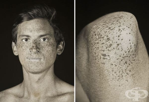 Портрет и част от тялото.