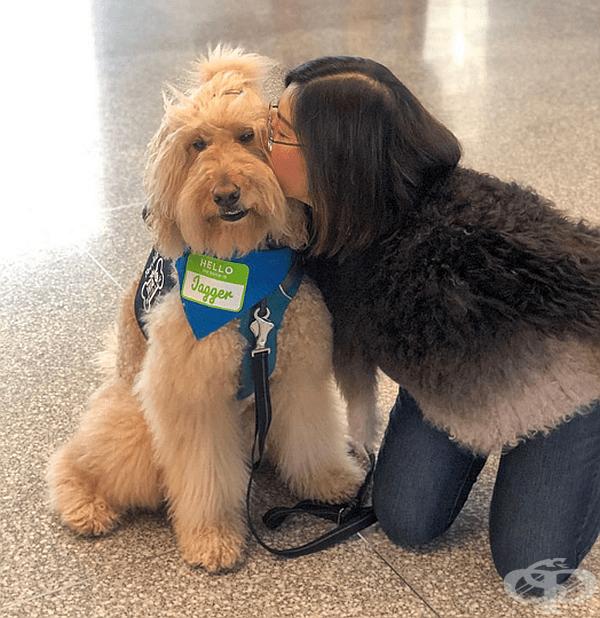 """""""Много изследвания доказват, че взаимодействието с животни може да подобри настроението, да намали стреса и да понижи кръвното налягане"""", коментира Криста Малоуни от SFSPCA."""