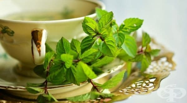 Чай или масло от мента. Облекчава главоболието, унищожава бактериите в устата и премахва неприятния дъх.