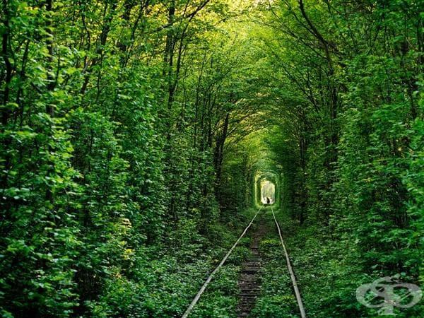 Тунелът на любовта, Украйна