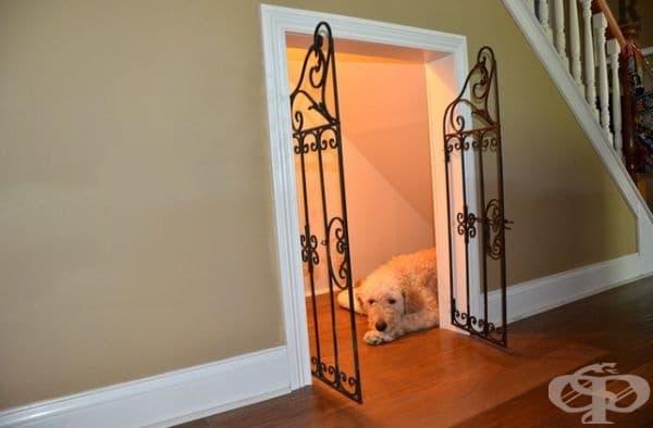 Пространството под стълбите може да се превърне в идеално място за вашия домашен любимец.