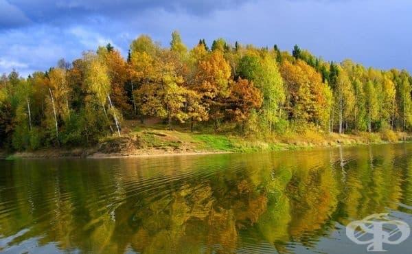 Беларус