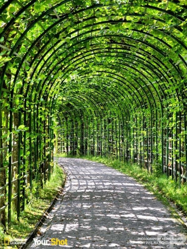 Жив тунел.
