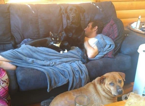 Той не може да спи сам и всички искат да му правят компания.