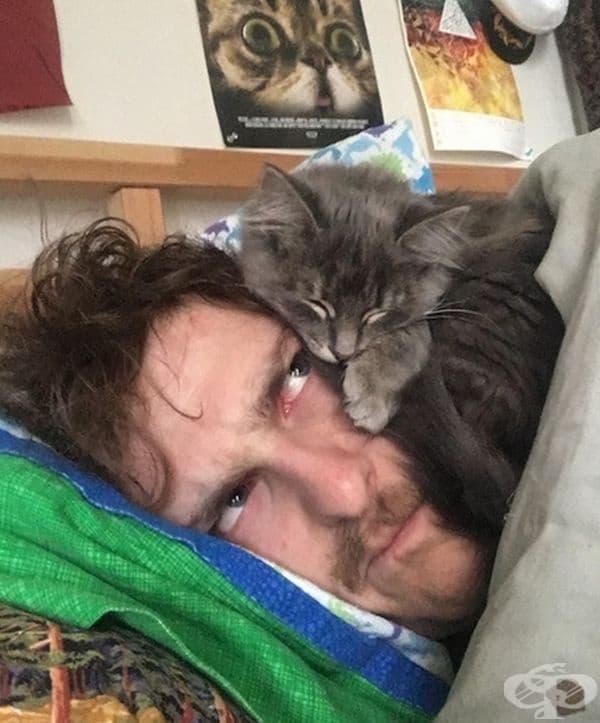 """""""Новата ми котка спи само върху главата ми. Запознайте се с Нют."""""""