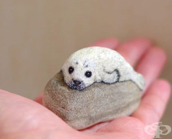 Бебе тюлен.