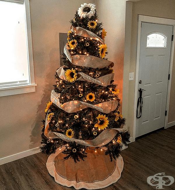 Най-елегантното дърво, което ще видите днес.