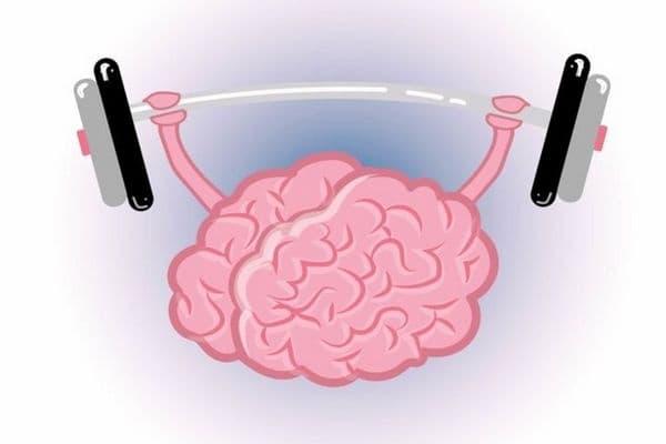 Нашият мозък се нуждае от обучение, точно като мускулите от тренировка. Мозъкът също се нуждае от подготовка - упражнения, обучения, здравословно хранене, добър сън, пътуване, нови дейности, танци.
