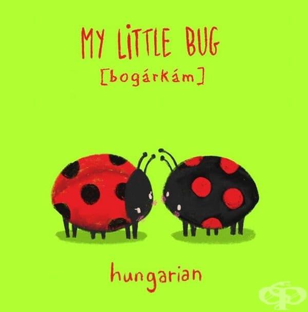 Моя малка калинка. Унгарски.