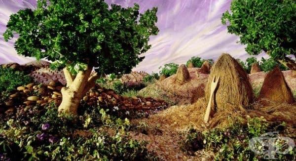 Магданозът се превръща в дървета и трева, а кокосът в бали.