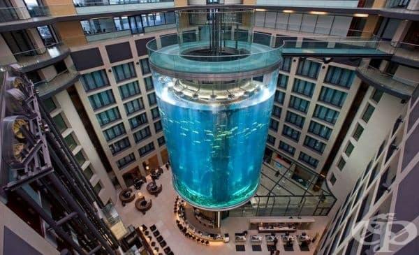 """Ресторант """"Atrium Bar"""", Берлин, Германия. Този ресторант също не е изцяло под вода, но може да ви впечатли с огромния 985 хил. литров цилиндър и 1500 вида морски обитатели."""