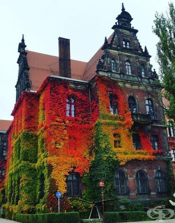 Национален музей във Вроцлав, Полша.