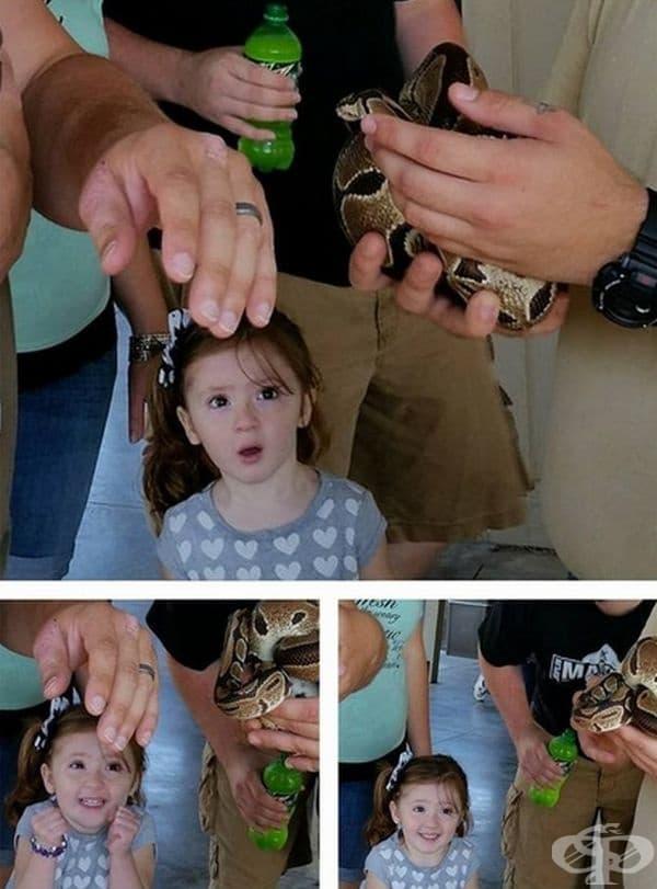 """""""Безценната реакция на дъщеря ми към змията."""""""