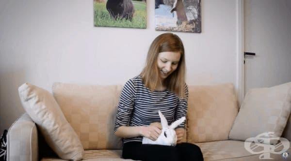 Домашните зайци могат да се отглеждат не само за удоволствие, те могат и да се тренират.