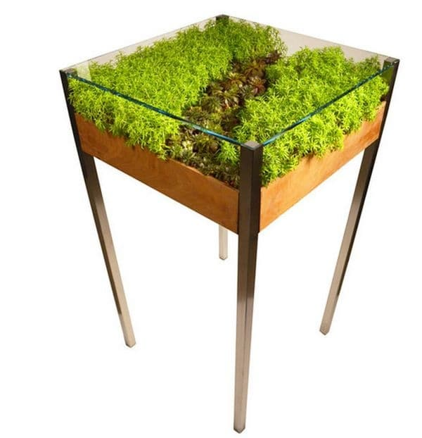 Маса с растения. Не е нужно да притежавате градина, за да добавите зеленина в живота си! Тази жива маса ще остане зелена през цялата година и ще изисква поливане само веднъж месечно.