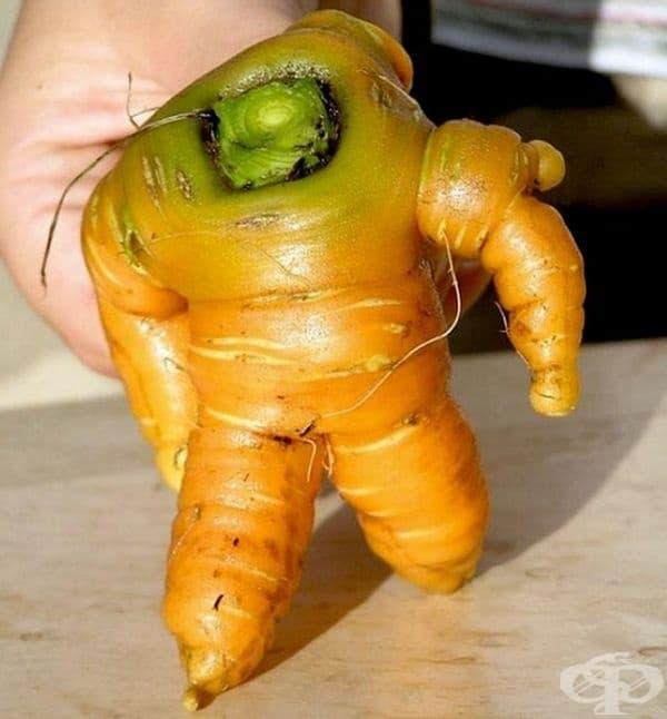 Мощен морков.
