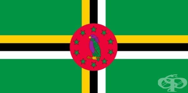 Въпреки това малка част от виолетови фигури присъства на знамената на две държави: на флага на Доминика се откроява лилав папагал.