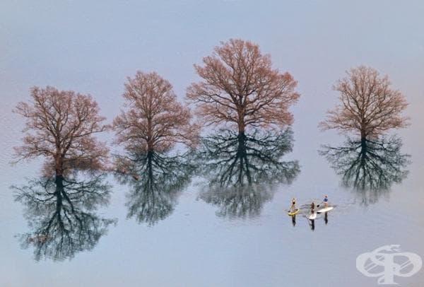 Последици от наводнение в Любляна, Словения.