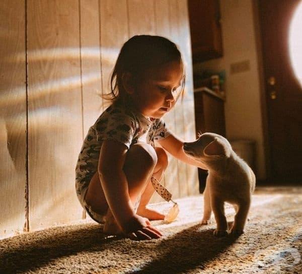 Има ли любов по-чиста от това между дете и куче?