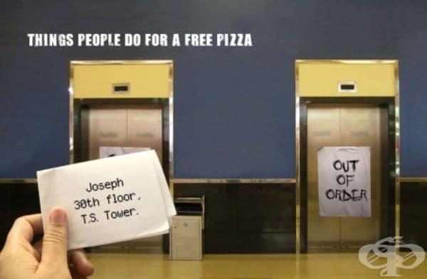 Domino's Pizza е американска верига пицарии по цял свят, създадена през 1960 г. От 1973 г. Domino's Pizza гарантира, че клиентите ще получат своите пици в рамките на 30 минути от поръчката, ако не - пицата ще бъде безплатна.