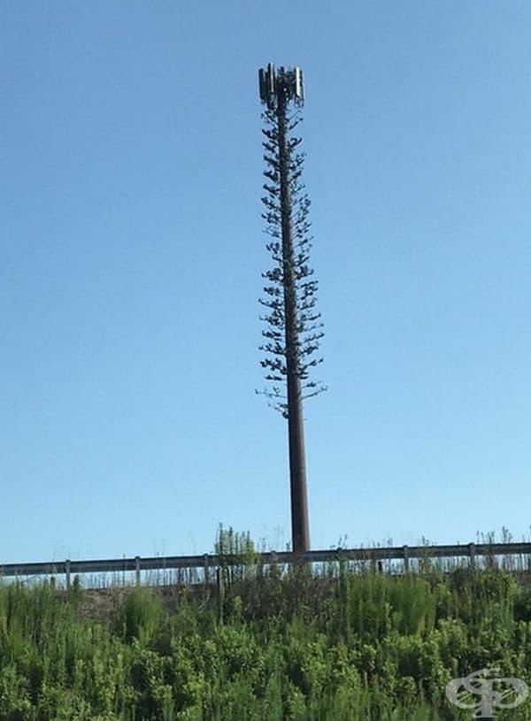 Антена на мобилен оператор, направена под формата на дърво.
