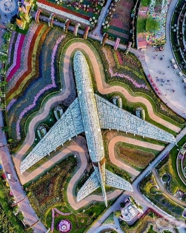 Повече от 5 милиона свежи цветя и растения са използвани за създаването на самолет A380 в реални размери. Дубай, ОАЕ.