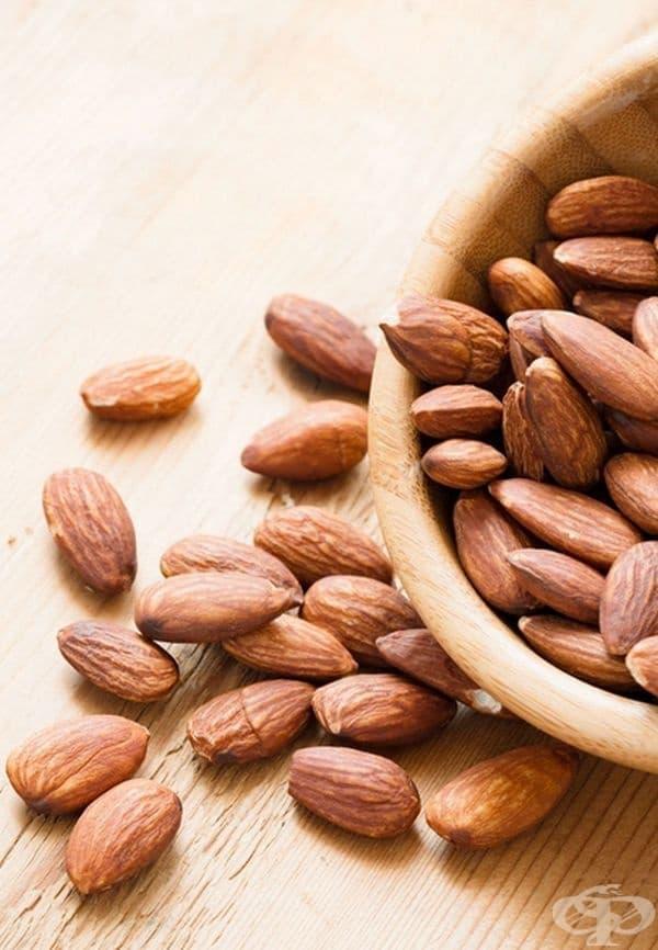 Ядки. В разумни количества, ядките могат да бъдат много полезни в опитите за отслабване. Според проучване в European Nutrition Journal, протеините от ядки способстват намаляването на теглото, спрямо протеините, получени от животински продукти.