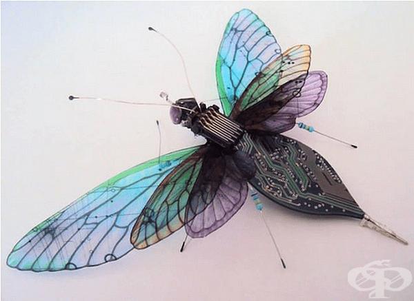 Това я вдъхновява и тя започва да изработва насекоми от платки.