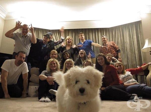 Семейна снимка без куче, не е семейна.