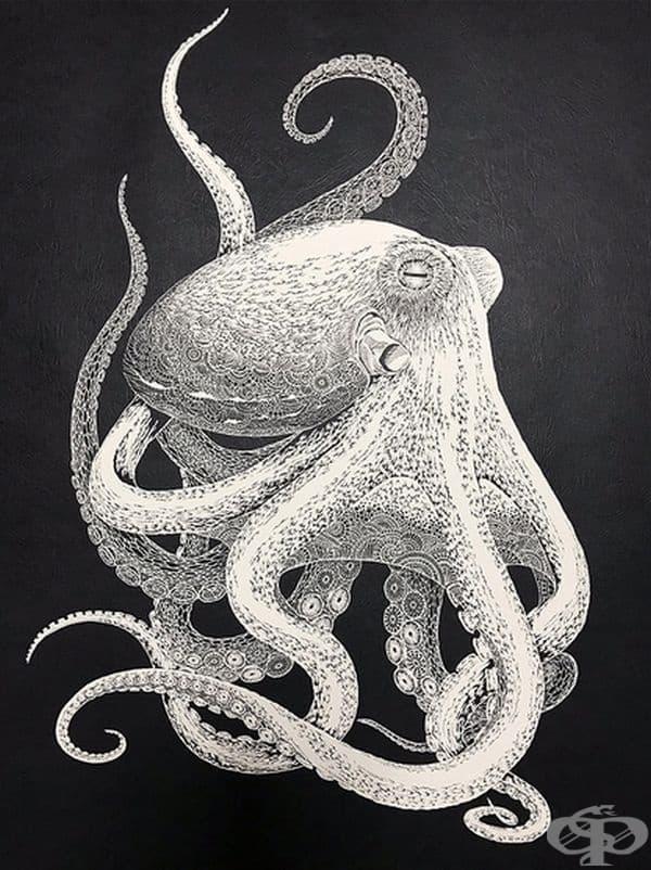 Особената черта в това изкуство, че самото произведение се прави от един лист хартия. Точно като този октопод.