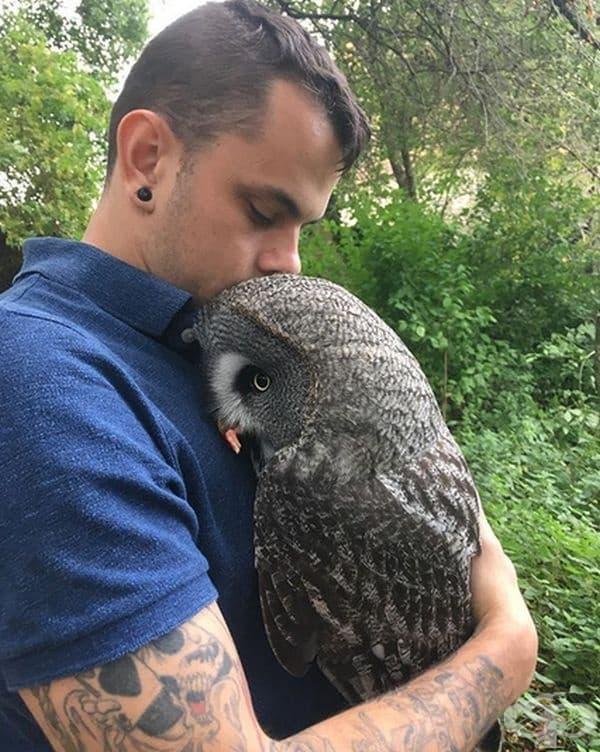 Този бухал изгледа толкова сладък в прегръдката на мъжа.
