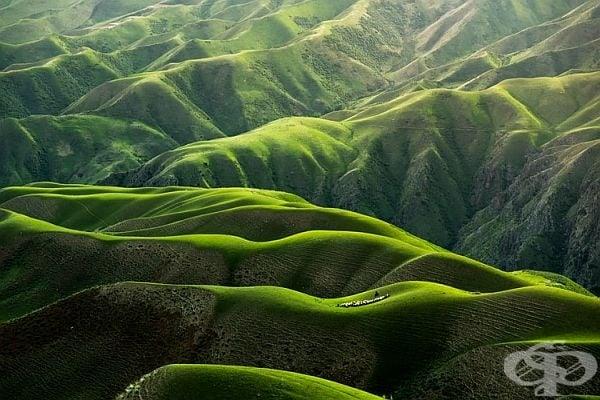 Море от планини в зелено. Не е вълнуващо?