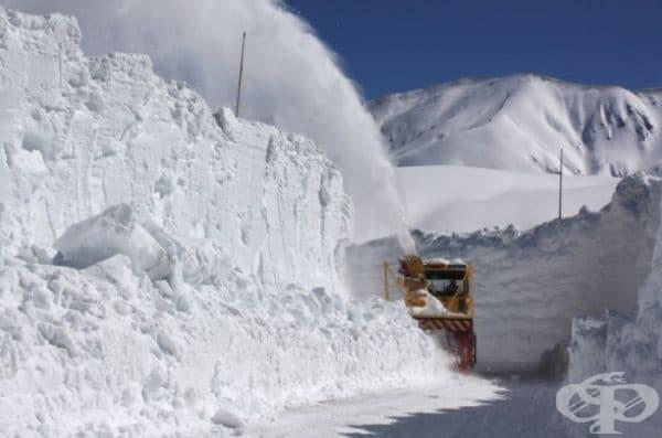 Тези стени се формират естествено в резултат на обилен снеговалеж, обграждащ туристическия маршрут и се оформят с месеци от снегорини. Простират се на 37 километра и стигат до планините Хида, известни като Японските Алпи.