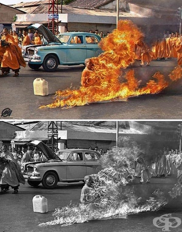 Амарал оцветява и много други исторически снимки като тази на изгорения монах.