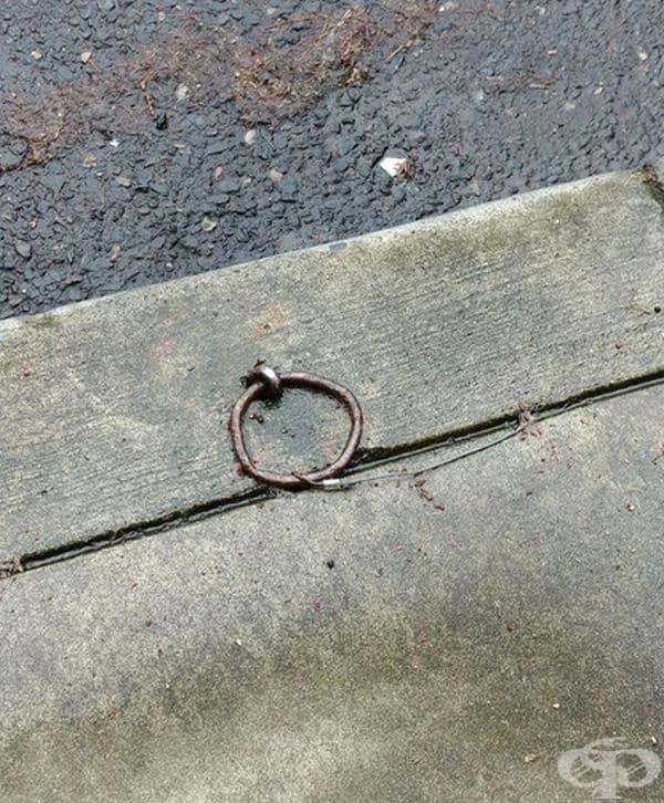 Това е пръстен за връзване на коне. Халките са често срещани в щата Орегон, САЩ.