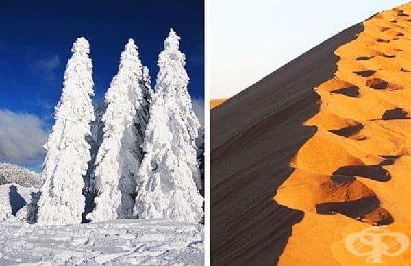 Да живеете там, където винаги е много студено или да живеете там, където винаги е ужасна жега?