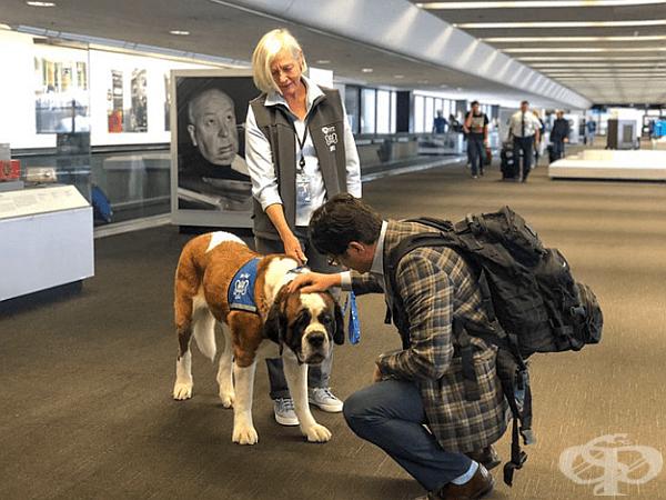 """""""Често хората възкликват, че им липсва срещата с кучето или че това е най-хубавото нещо, след дългия полет"""", допълва Малоуни."""