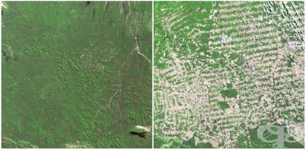 Горите в Рондиния, Бразилия (юни 1975 - август 2009).