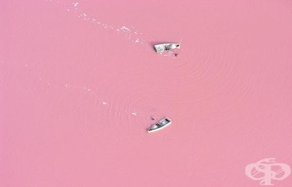Езерото Редба, Сенегал.