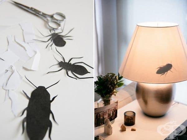 За хора със страх от насекоми.