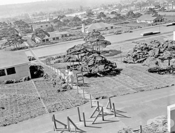 Най-голямата американска мишена е била успешно прикрита под фалшив квартал, позициониран върху покрива на завода. Проектът е струвал 1 милион долара.