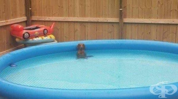 Стои виновен в другия край на басейна.