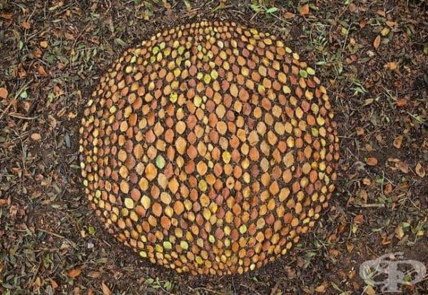 Изкуство от камъни и листа в омайващи мандали и спирали