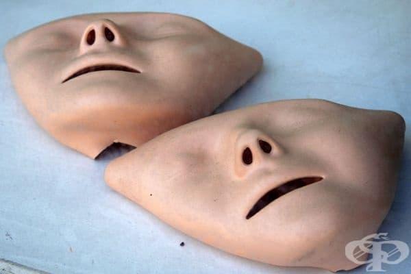 """Тъй като манекенът е използван многократно в обучението на кадри, хората го определят като """"най-целунатото лице"""" на всички времена."""