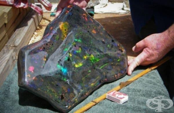 През 2011 г. дизайнерът Стюарт Хюз открива в Австралия най-голямата матрица на опал в света. Камъкът съдържа 55 000 карата чист опал и е оценен на 1 млн. долара.