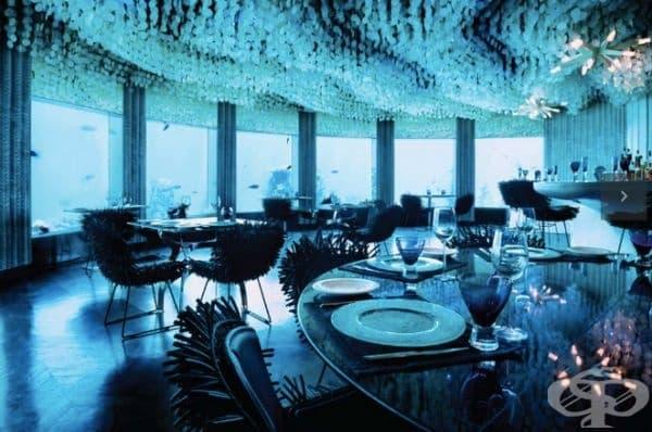 """Ресторант """"Subsix"""", Частни острови Нияма, Малдиви. Той се намира дълбоко в морето и, за да се стигне до него, е нужно моторна лодка. След това се слиза по грандиозна стълба. Човек може да се наслади на множество акули."""