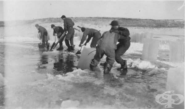 Човек, който изрязва лед. В студените части на страните е имало хора, които са изрязвали парчета лед, за да съхраняват храна и други продукти.