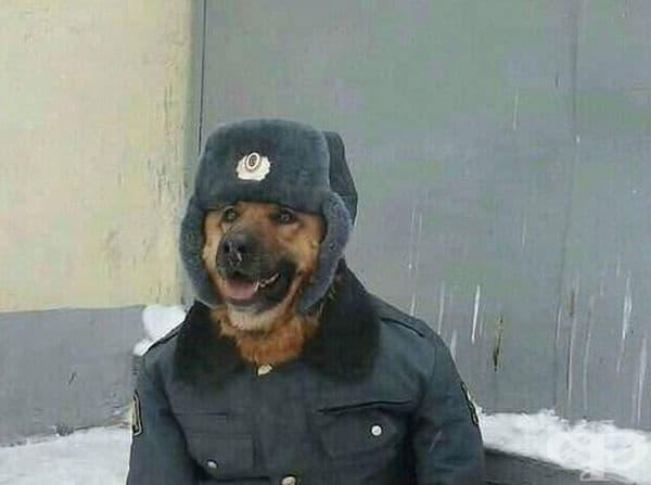 Екипиран за зимата.